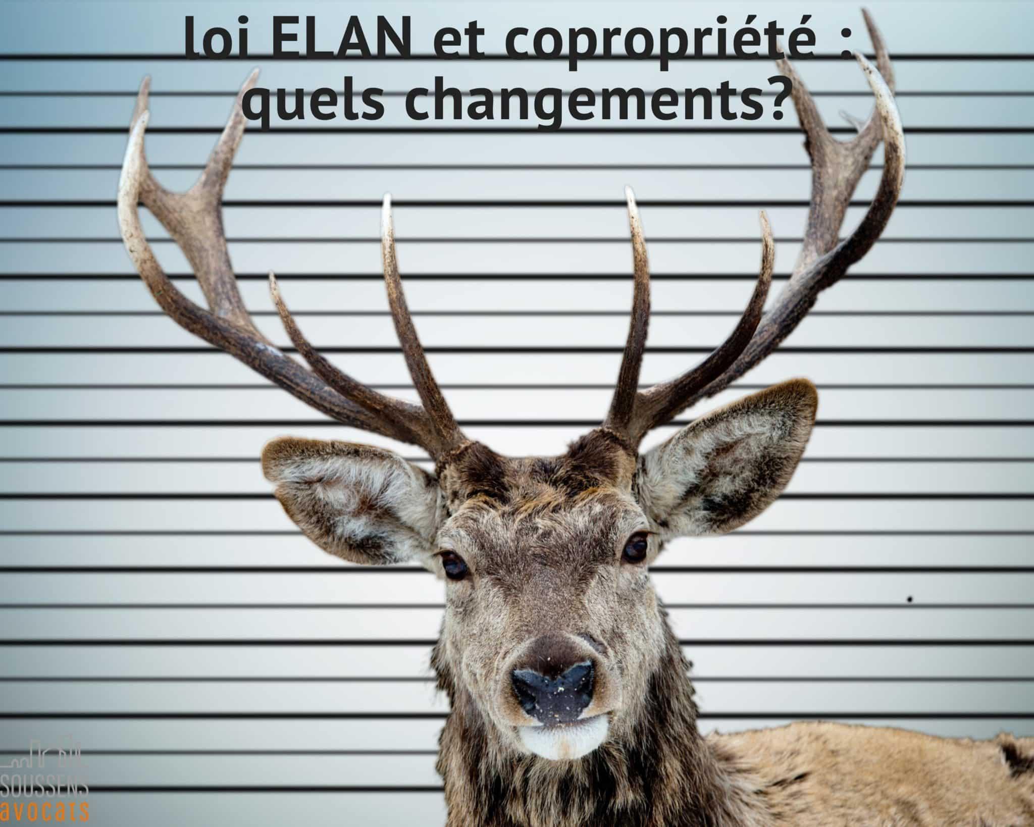 Loi ELAN et copropriété : quels changements?